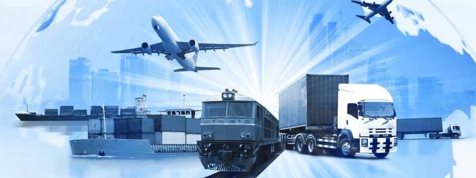 Le BAC PRO TRANSPORT, un passeport logistique